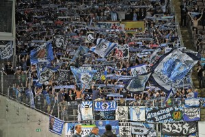 Nicht nur im Lauterer Block, auch bei den Löwen. Spiel am Betzenberg in der Saison 2014/2015 ()