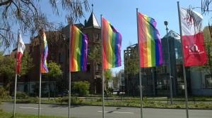 Die ersten Regenbogenfahnen in der Lauterer Innenstadt (Foto: Robin Roth)