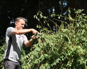 Vorsitzender Thomas Gries bei der Gartenarbeit (Foto: 1.FC Kaiserslautern)